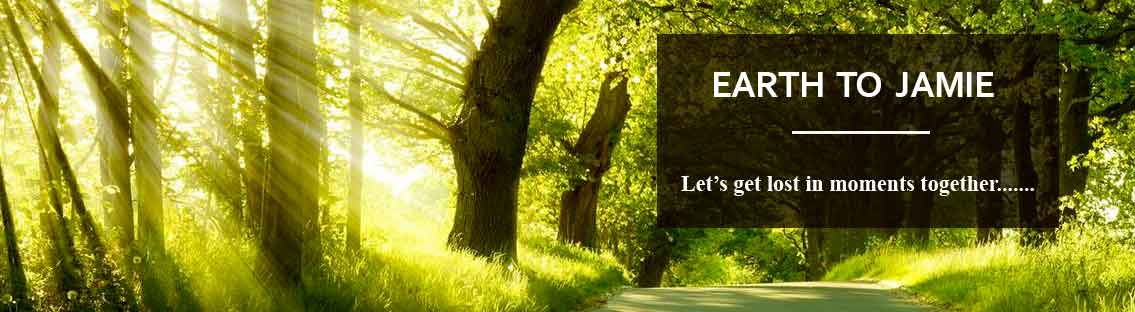 Header Image with Trees for Earth to Jamie Blog.